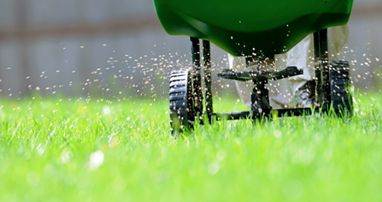 Hacks for Fertilizers for St Augustine Grass