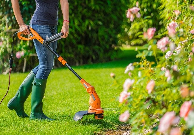 Best Weed Eater for Women in 2020