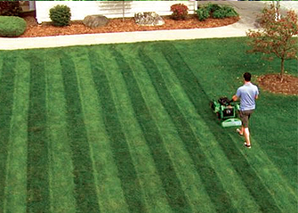 rows moving pattern