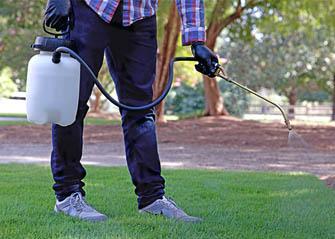 applying crabgrass killer on lawn