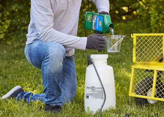 crabgrass and weed killer preparation