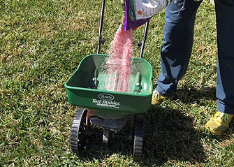 preparing weed and feed for southern lawns