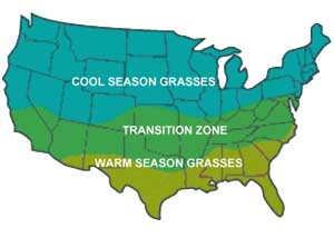 grass types in the US