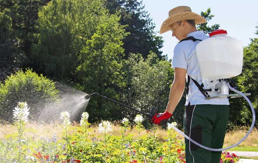 using a backpack sprayer