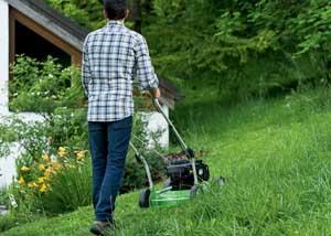 using a cheap lawn mower