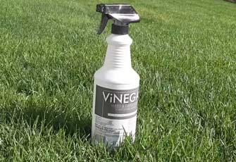 using industrial vinegar on lawn